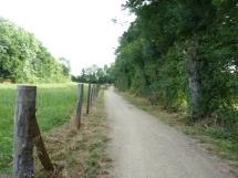 Chemin cyclable sur l'Eurovélo 6 / la Loire à vélo